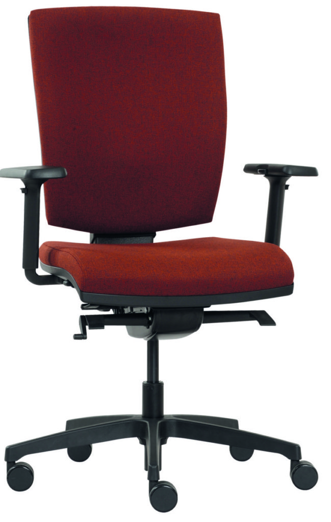 židle Anatom