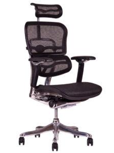 Zátěžová síťovaná židle SIRIUS Q24